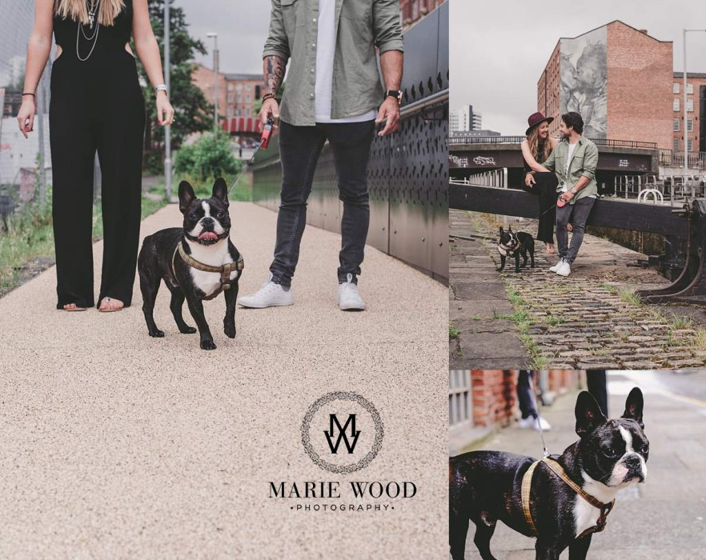 dog on an engagement shoot by manchester canal